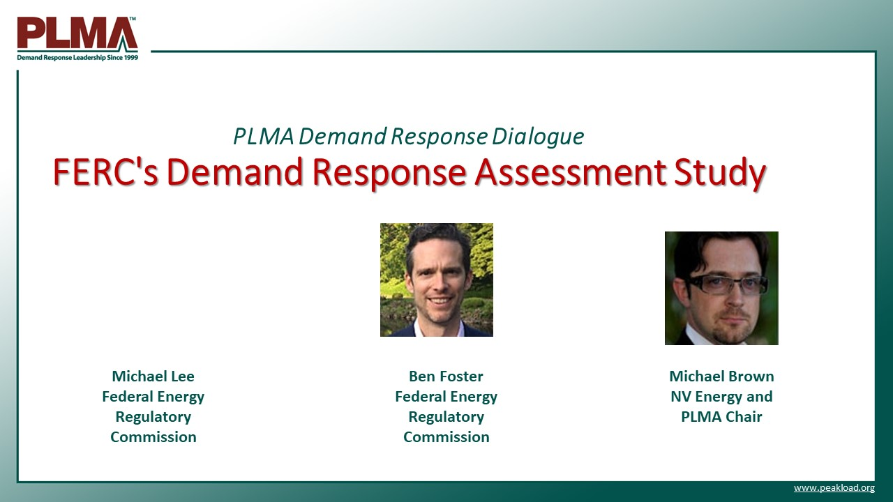 FERC DR Assessment